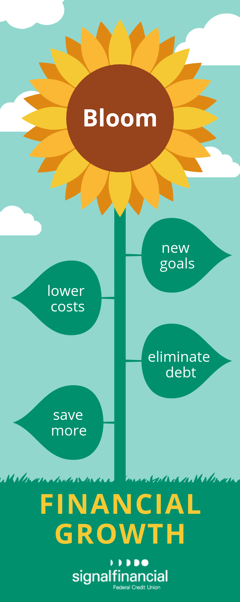 steps for financial growth