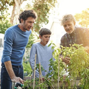 three generations of males learning how to garden