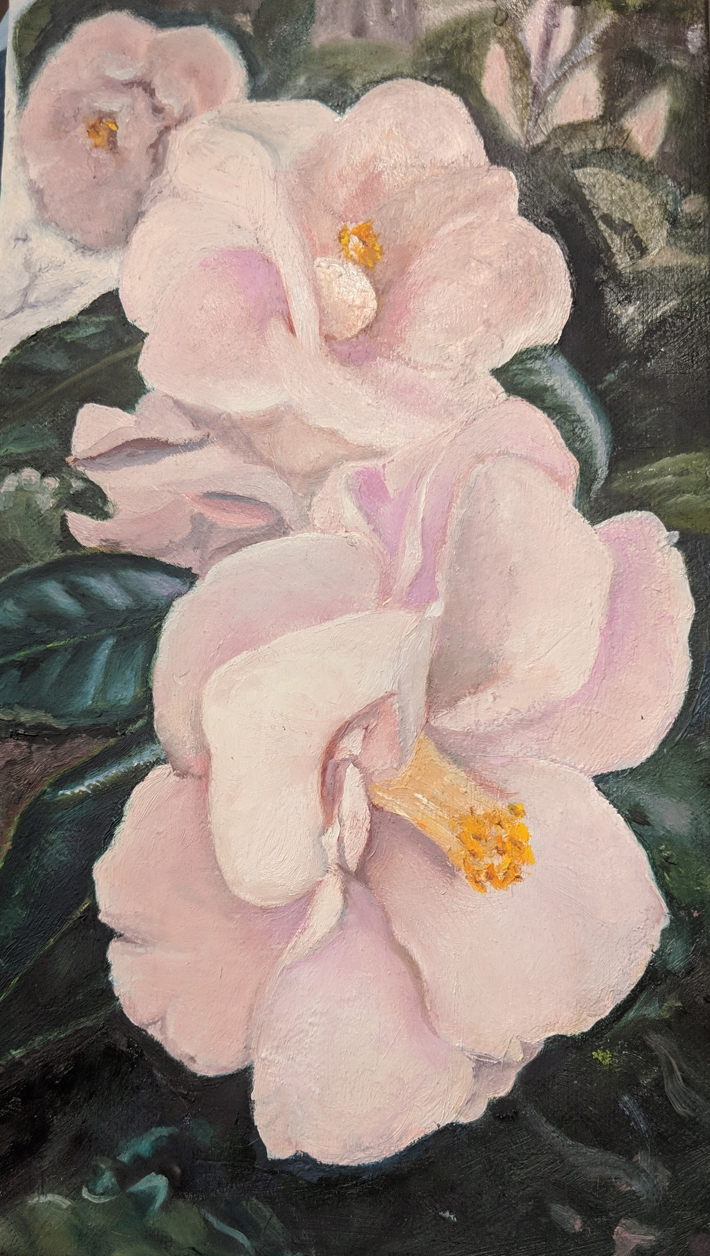 Floral painting by artist Francie Dougherty